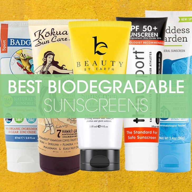 Best Biodegradable Sunscreens featured image